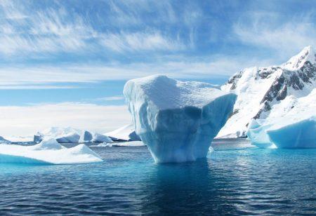 南極 に あっ て 北極 に ない もの は